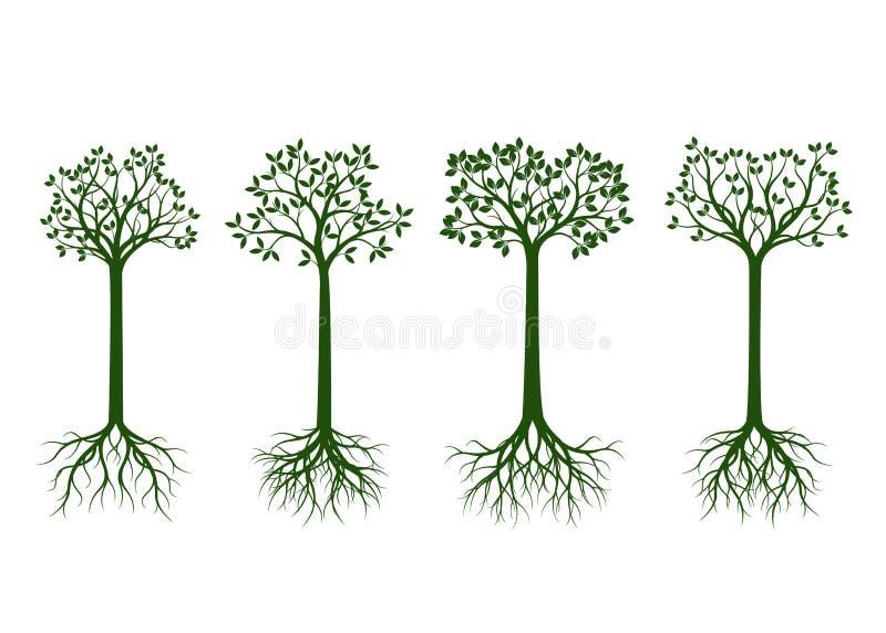 Комплект зеленых деревьев с листьями и корня на черной предпосылке бесплатная иллюстрация