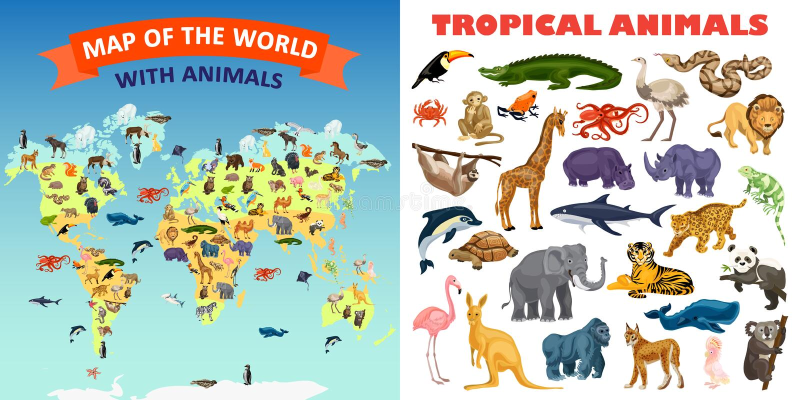 Комплект знамени животных зоопарка, стиль шаржа иллюстрация штока