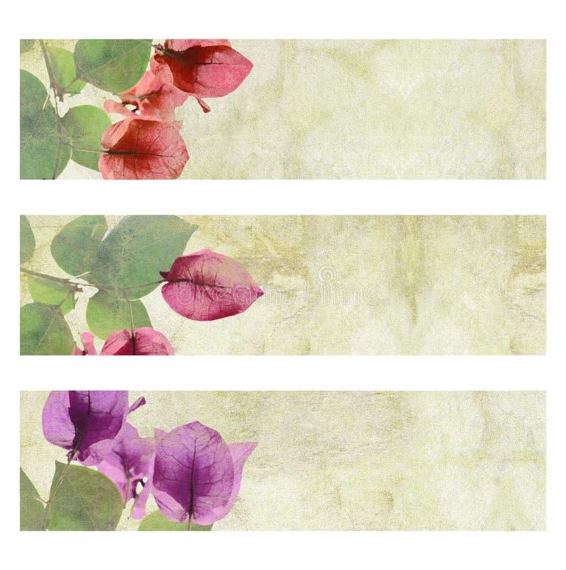 комплект знамени произведения искысства изолированный цветком иллюстрация вектора