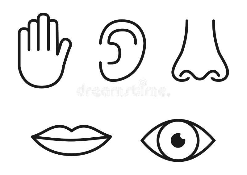 Комплект значка плана 5 человеческих чувств: глаз зрения, нос запаха, ухо слышать, рука касания, рот вкуса с языком иллюстрация штока