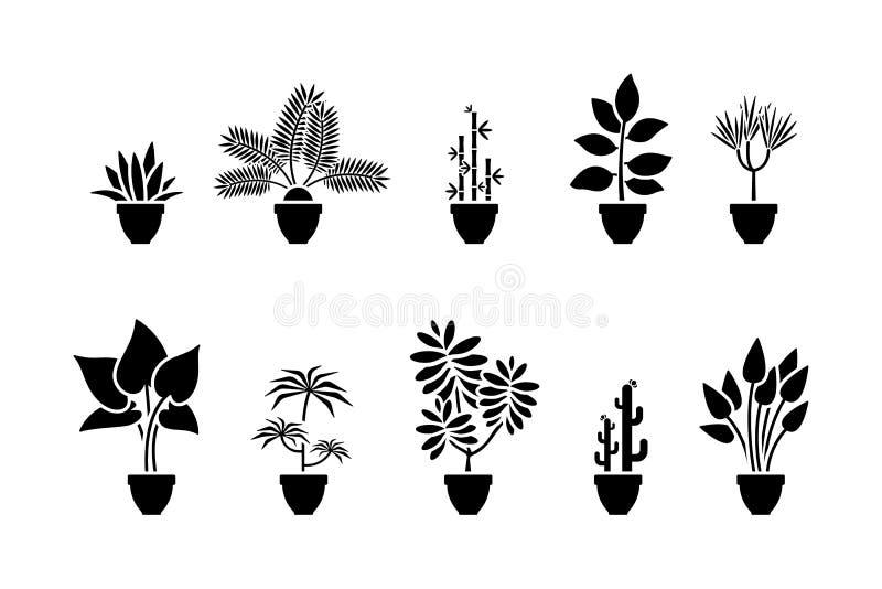 Комплект значка цветков дома Черная пиктограмма завода в баке иллюстрация штока