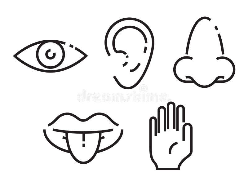 Комплект значка 5 человеческих чувств Простая, минимальная линия иллюстрация значков иллюстрация штока