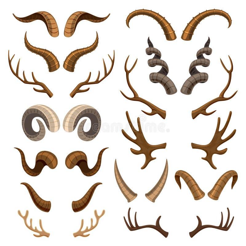 Комплект иллюстрации antlers дикого животного и оленей или антилопы вектора рожка horned рогового трофея звероловства северного о бесплатная иллюстрация