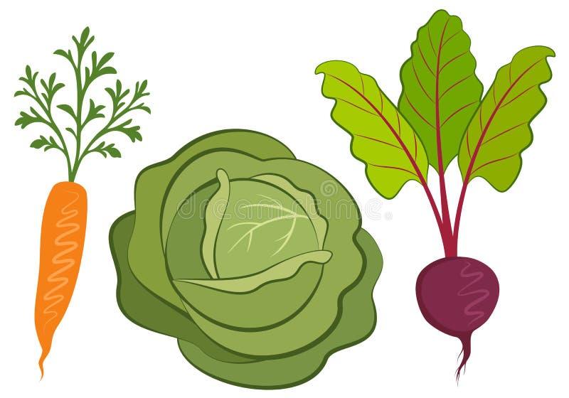 Комплект иллюстраций овощей нарисованных рукой иллюстрация штока