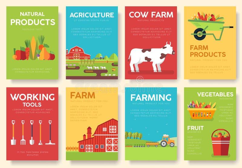 Комплект информационных карт фермы Шаблон flyear, кассеты природы, плакаты, обложка книги, знамена Концепция Eco Infographic иллюстрация вектора