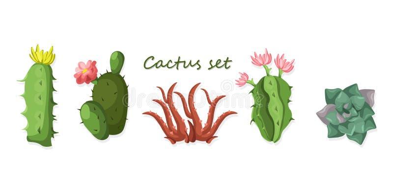 Комплект кактуса изолированный на белом векторе предпосылки иллюстрация штока