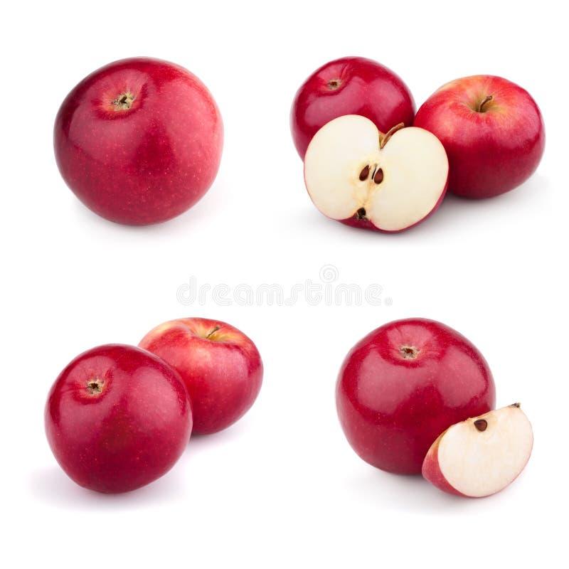 комплект красного цвета яблок стоковая фотография