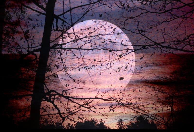 Комплект луны, подъем Солнця стоковые изображения