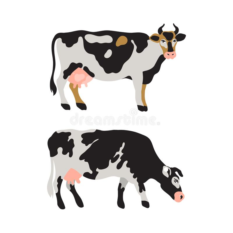 Комплект молочных коров запятнанных в черной, белом, сером, золоте и пинке Земледелие, сельское хозяйство, жизнь деревни любимчик иллюстрация вектора