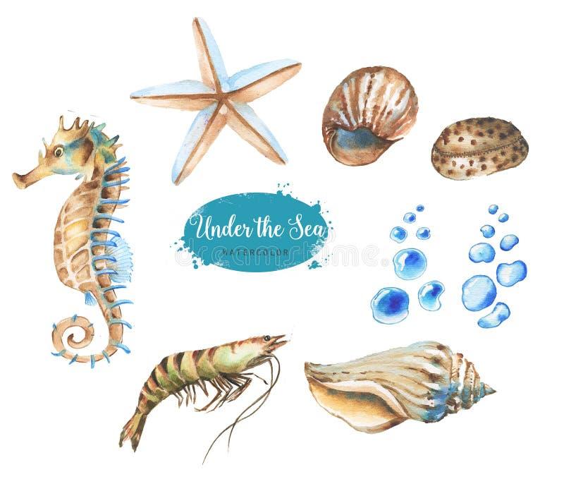 Комплект морских предметов бесплатная иллюстрация