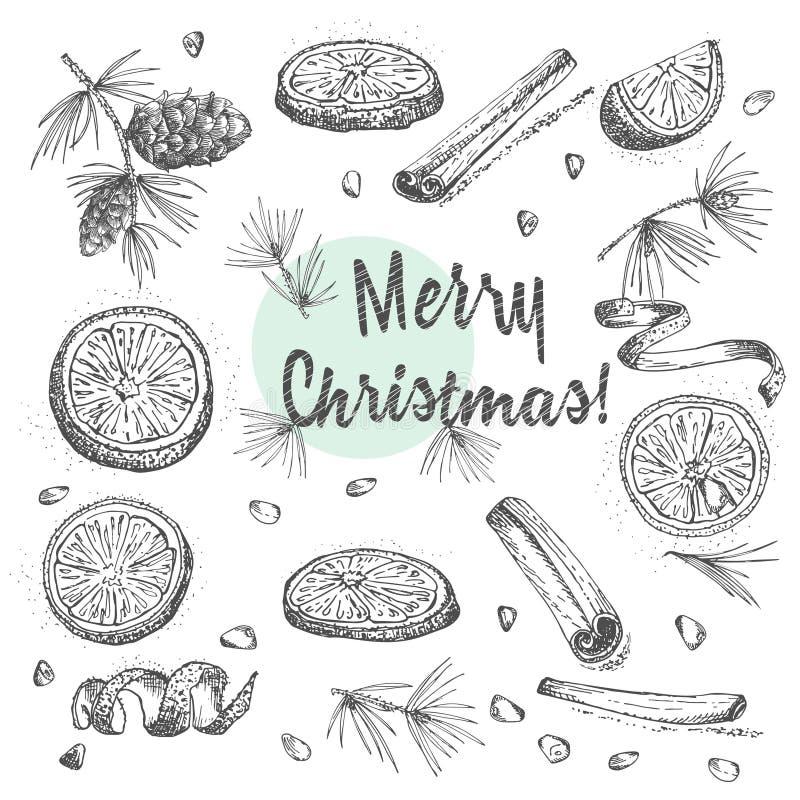 Комплект нарисованной рукой зимы рождества spices картина Традиционно использованный в сделанных десертах, горячее обдумыванное в иллюстрация вектора