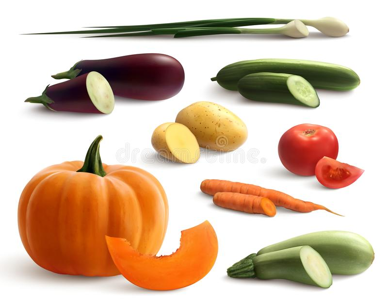 Комплект овощей Cutted реалистический иллюстрация штока