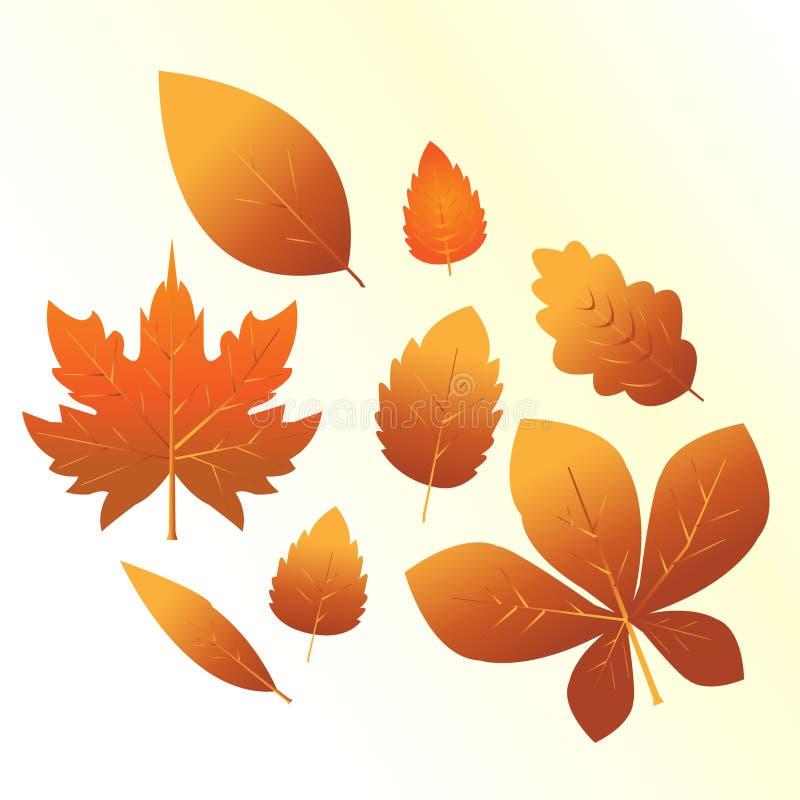 Комплект оранжевых листьев иллюстрация штока