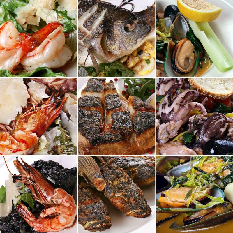комплект продуктов моря смешивания стоковое фото rf