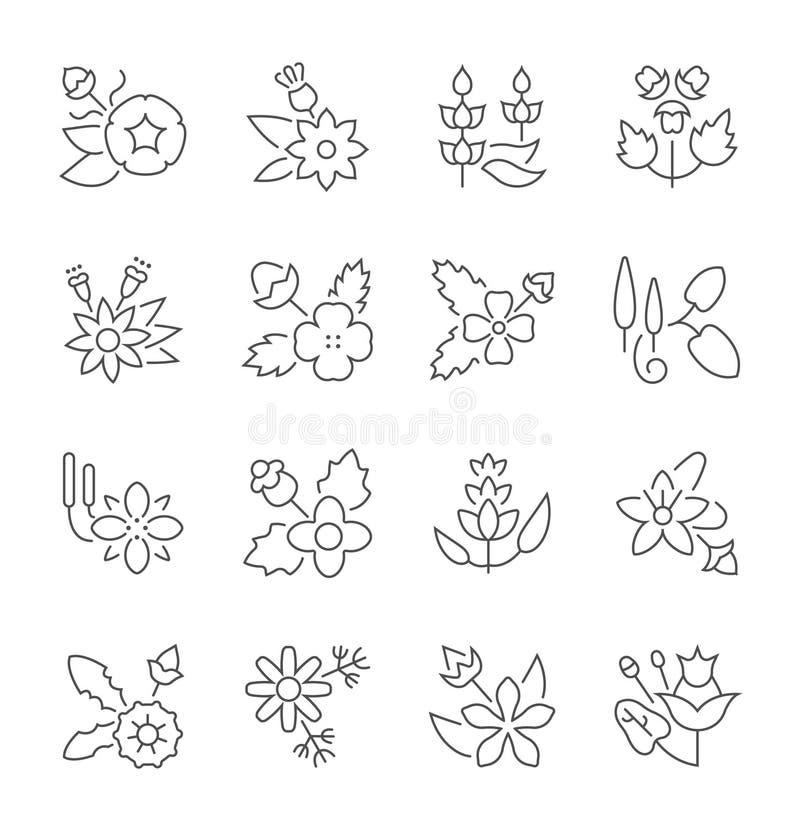 Комплект простых значков трав иллюстрация штока