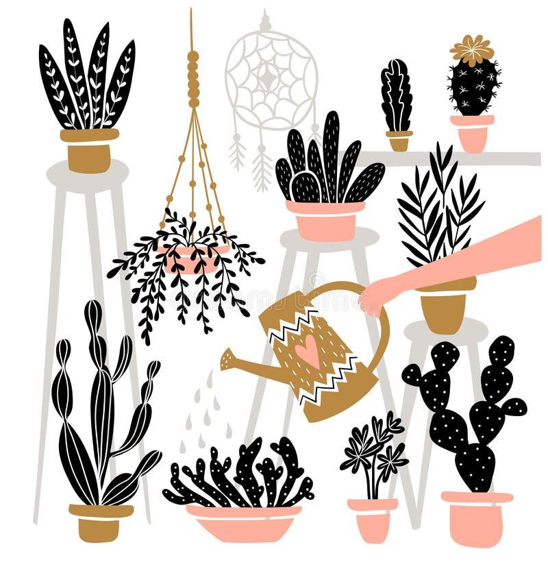 Комплект различных крытых в горшке заводов в интерьере boho Большой для садовничая кассет, магазина цветка также вектор иллюстрац иллюстрация вектора