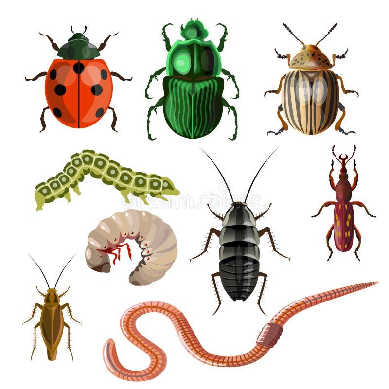 Комплект различных насекомых бесплатная иллюстрация