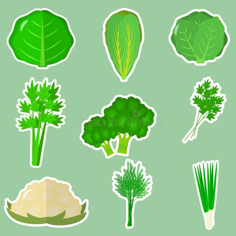 Комплект свежих овощей в белом ходе на зеленой предпосылке иллюстрация вектора