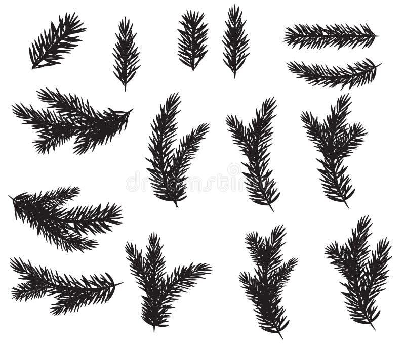 Комплект собрания реалистической ели разветвляет силуэт для рождественской елки, сосны также вектор иллюстрации притяжки corel иллюстрация штока