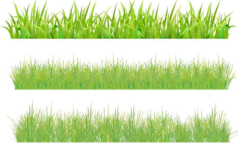 комплект травы иллюстрация штока
