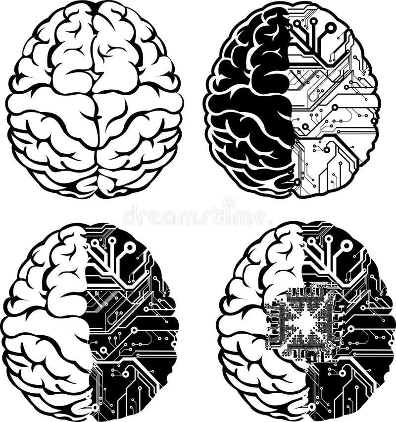 комплект цвета мозга электронный один иллюстрация штока