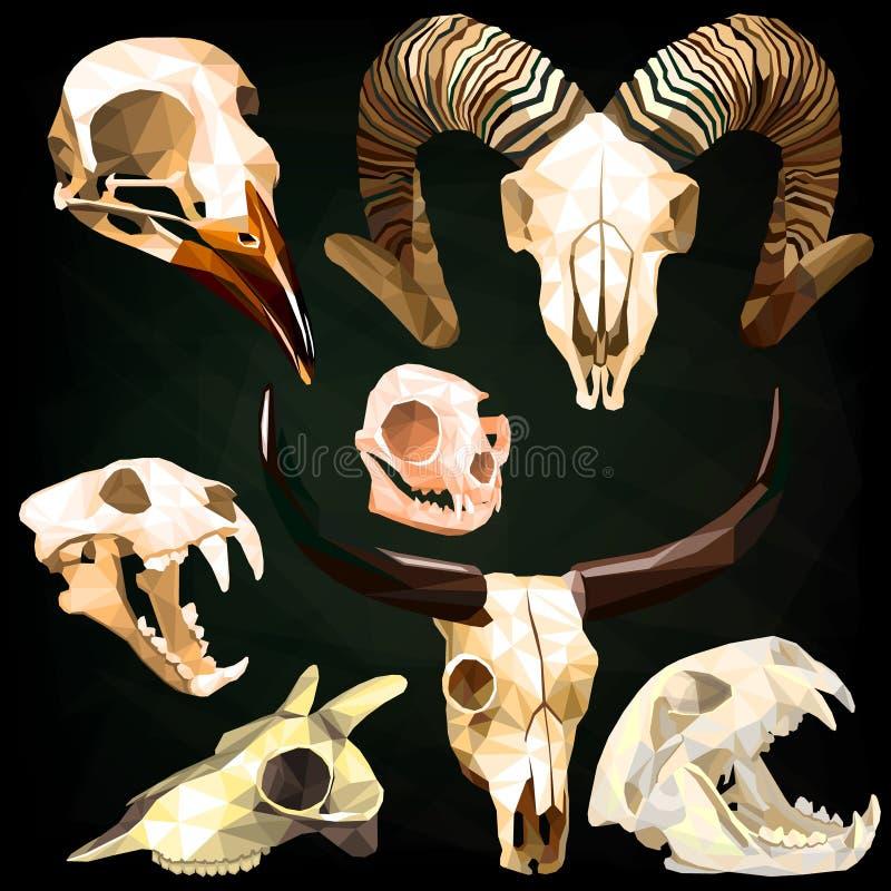 Комплект черепа хеллоуина животный в низком поли стиле иллюстрация штока