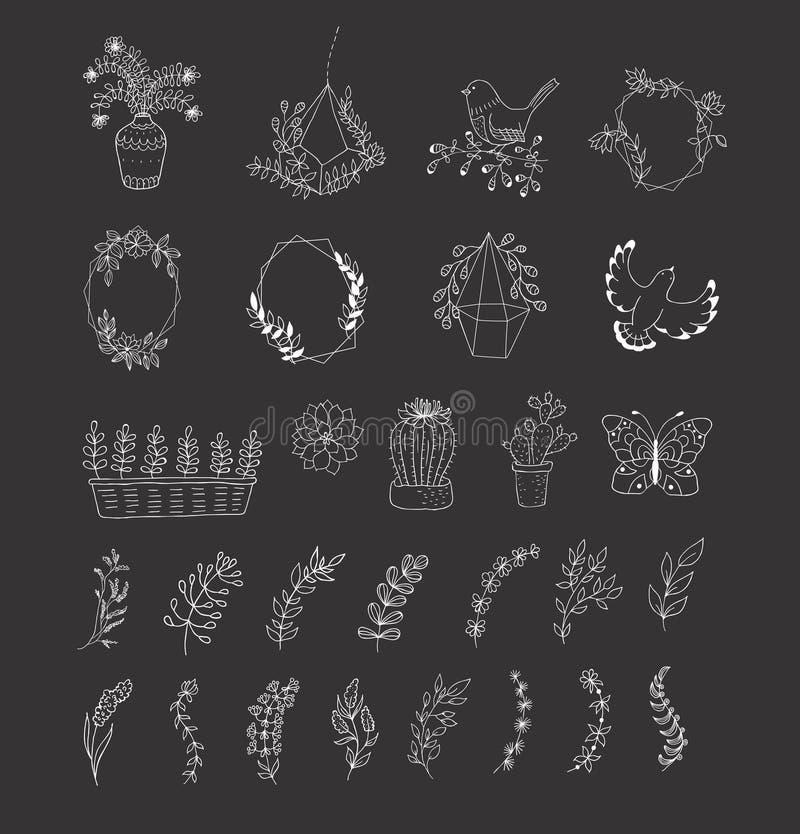 комплект элементов конструкции флористический бесплатная иллюстрация