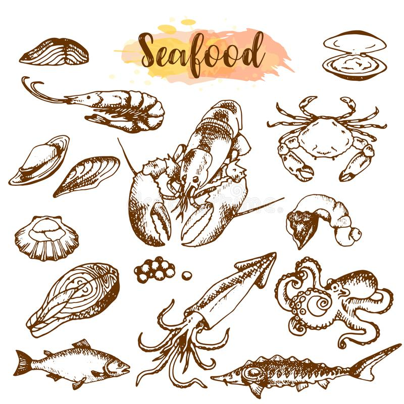 Комплект эскиза морепродуктов Рыбы, креветка, краб, омар, осьминог, наяды изолировали график на белой предпосылке комплект вектор иллюстрация штока