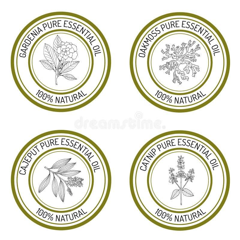 Комплект ярлыков эфирного масла иллюстрация штока