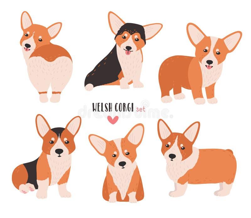 Комплект corgi welsh в различных позициях Малая милая собака табунить породу изолированная на белой предпосылке животный смешной  бесплатная иллюстрация