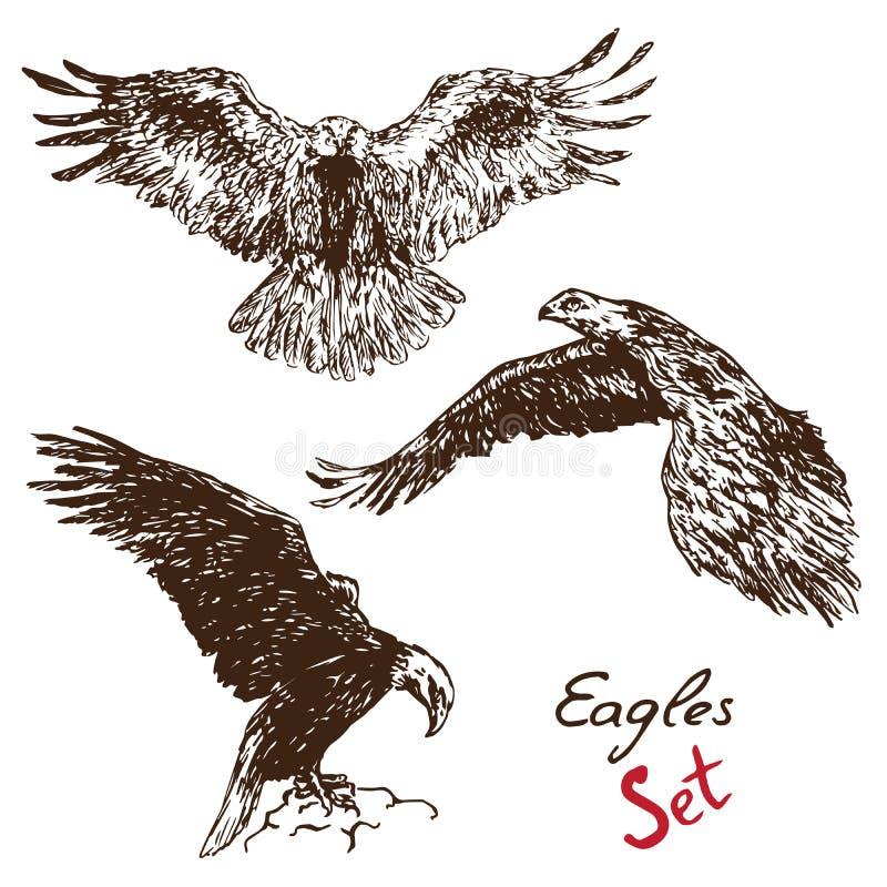 Комплект Eagles, с надписью, doodle нарисованный рукой бесплатная иллюстрация