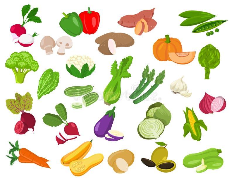 Комплект vegetable иллюстрации Vegetable значки иллюстрация вектора