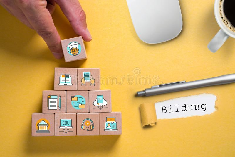 Компоненты цифровой учить как значки на кубах и слове стоковые фото