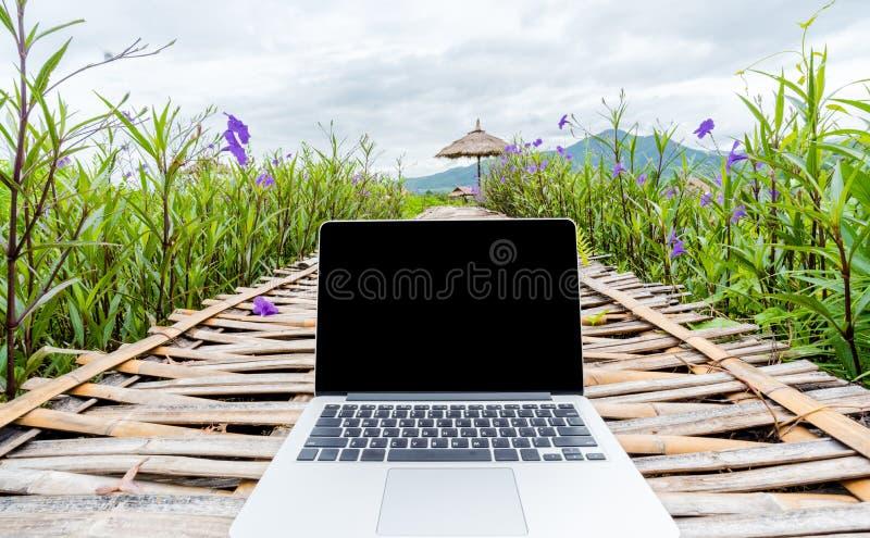 Компьтер-книжка с пустым экраном на деревянной дороге в парке природы внешнем стоковые изображения