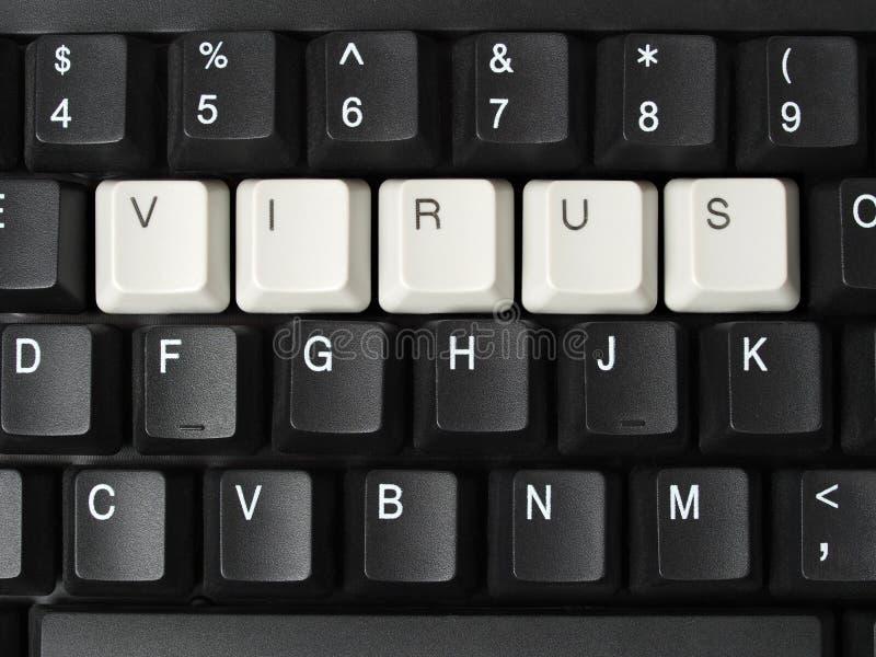 Компьютерный вирус стоковая фотография rf