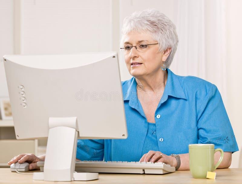 компьютер смотря женщину монитора стоковые фото