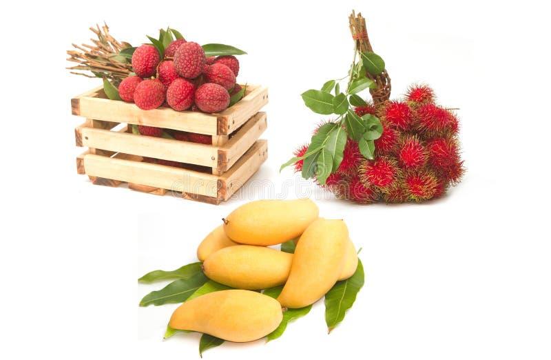 Комплект азиатских плодоовощ, манго, рамбутанов и lychees стоковое изображение