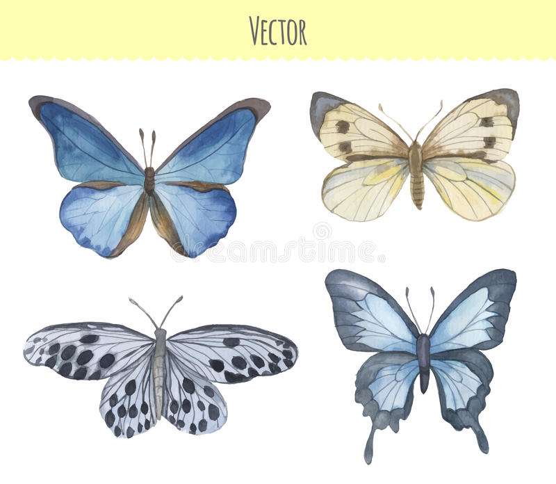 Комплект бабочек акварели также вектор иллюстрации притяжки corel иллюстрация вектора