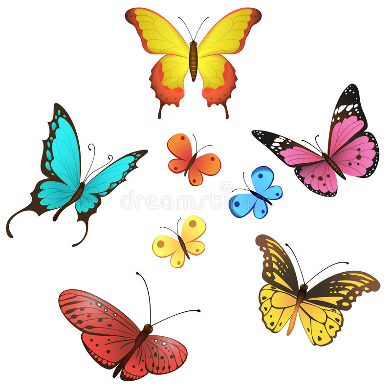 Комплект бабочки вектора иллюстрация вектора