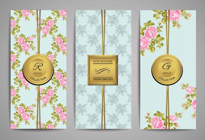 Комплект брошюр с винтажными розовыми розами вектор детального чертежа предпосылки флористический Шаблоны вектора ультрамодные бесплатная иллюстрация