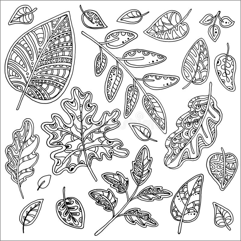 Комплект вектора листьев иллюстрация штока