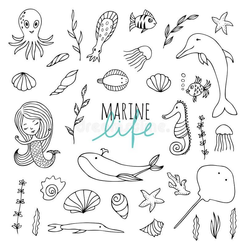 Комплект вектора морской флоры и фауны иллюстрация штока