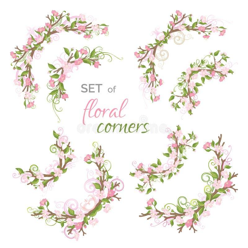 Комплект вектора углов весны флористических бесплатная иллюстрация