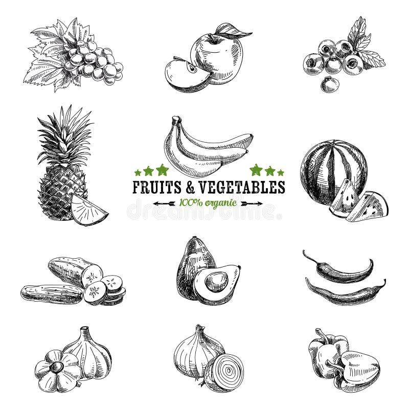 Комплект вектора фрукта и овоща бесплатная иллюстрация