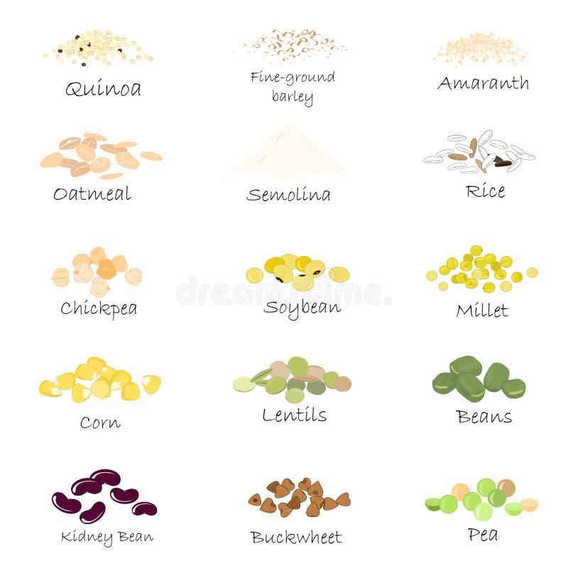 Комплект вектора эмблем хлопьев и зерна Для пакуя гроутов, печати опарника кухни, рекламируя здоровую еду иллюстрация штока