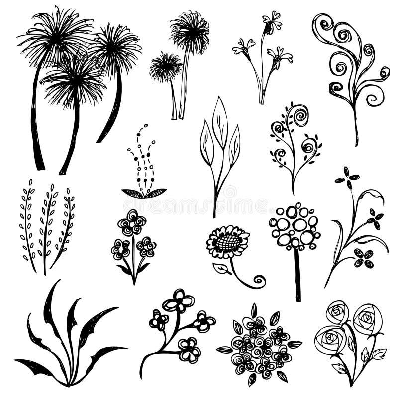Комплект вектора эскиза цветка иллюстрация штока