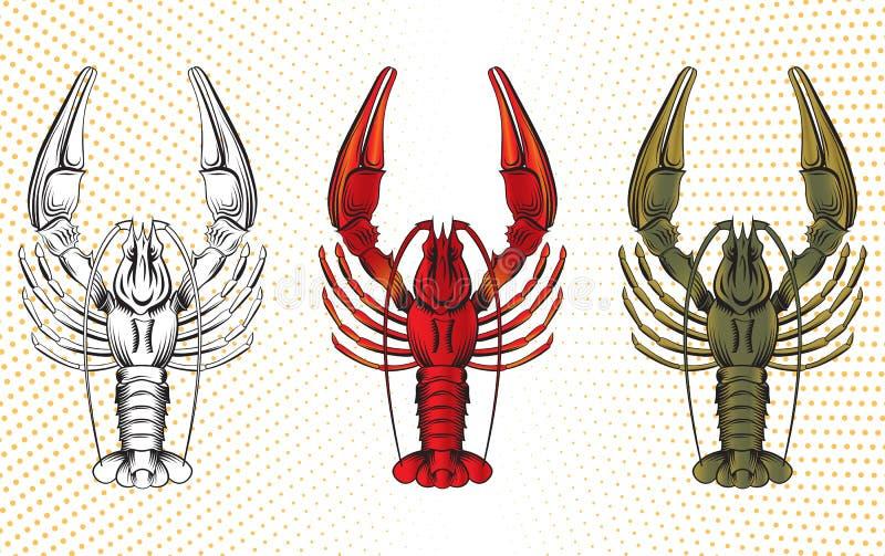 Комплект вектора crawfish иллюстрация вектора