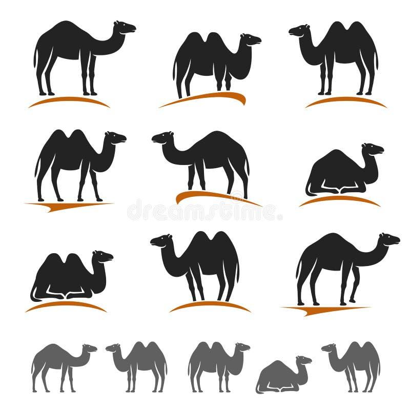 Комплект верблюда вектор иллюстрация вектора