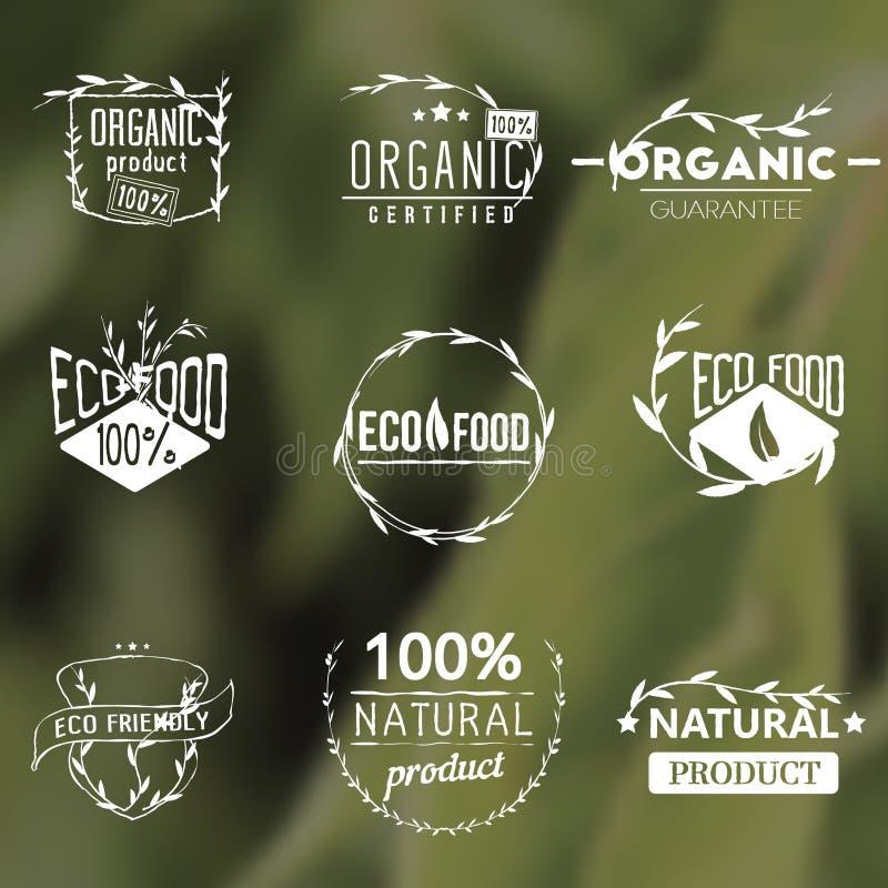 Комплект винтажных органических ярлыков иллюстрация штока