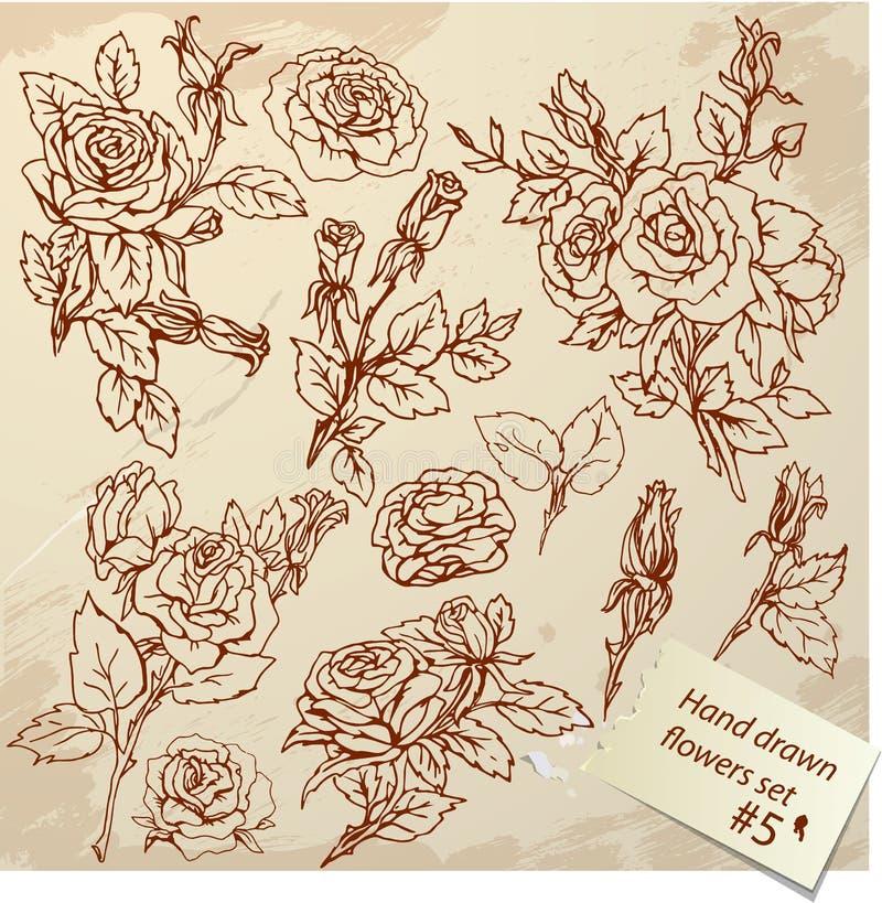 Комплект винтажных реалистических графических цветков - роз иллюстрация штока